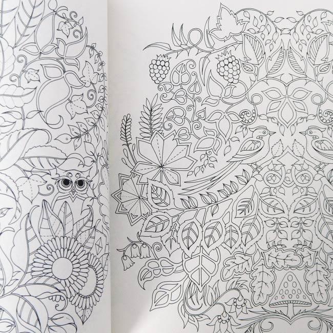 Floresta Encantada Livro De Colorir E Caca Ao Tesouro